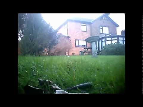 Cats eye view with Eyenimal pet cam Capel Le Ferne