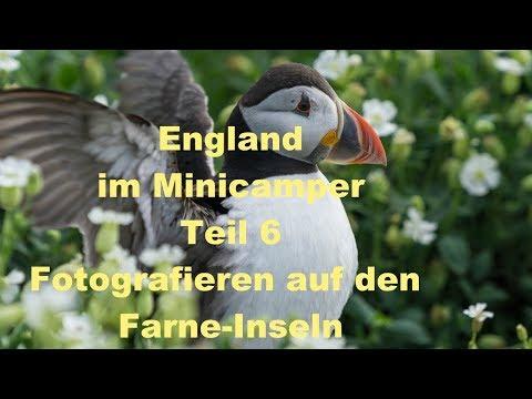 England Schottland mit dem Minicamper - Teil 6 - Farne-Inseln