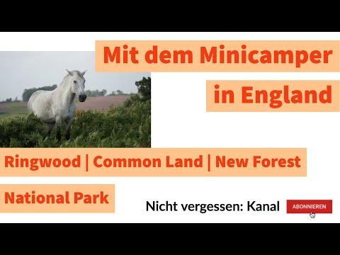 Ringwood | Common Land | New Forest National Park | Mit dem Minicamper in England