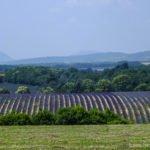 Frankreich 2013 – Hautes Alpes – Provence