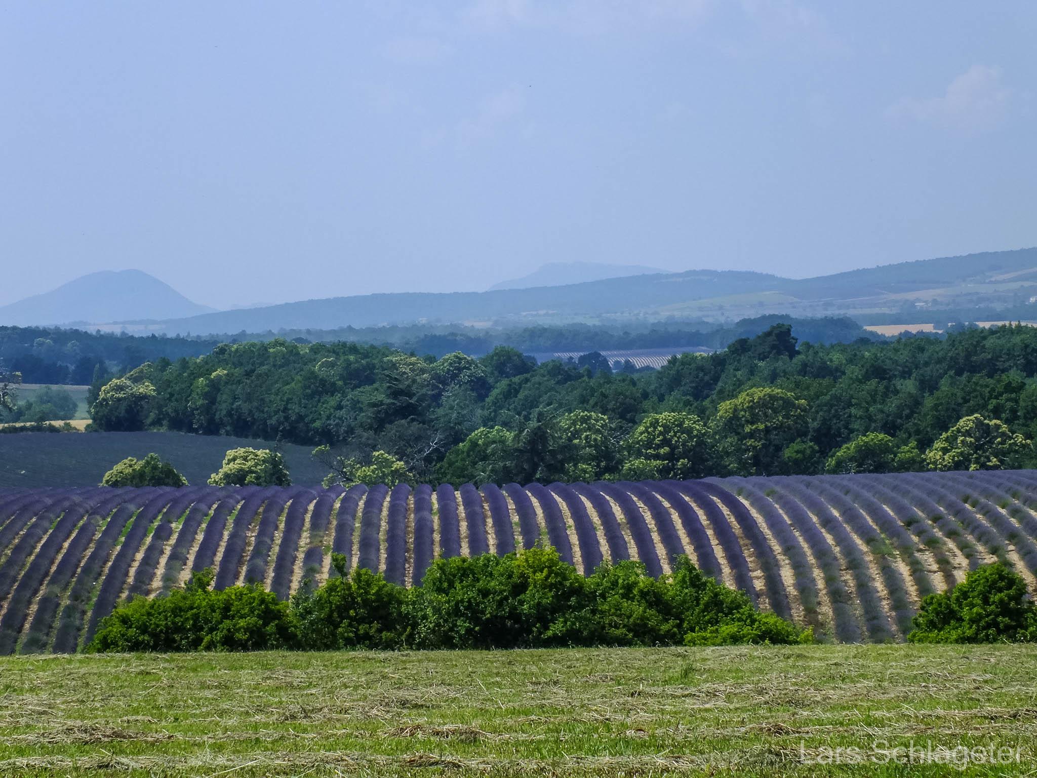 Frankreich Provence Reisebericht