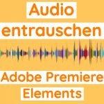 Adobe Premiere Elements ▷ Rauschen entfernen auf der Audiospur