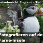 Wohnmobil Reisebericht 2018 | Mit dem Minicamper zu den Farne-Inseln | Teil 2