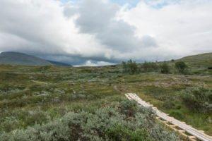 Padjelantaleden - Wandern in Schweden
