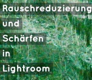rauschreduzierung_schaerfen_lightroom