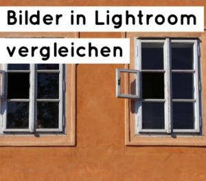 lightroom-bilder-vergleichen