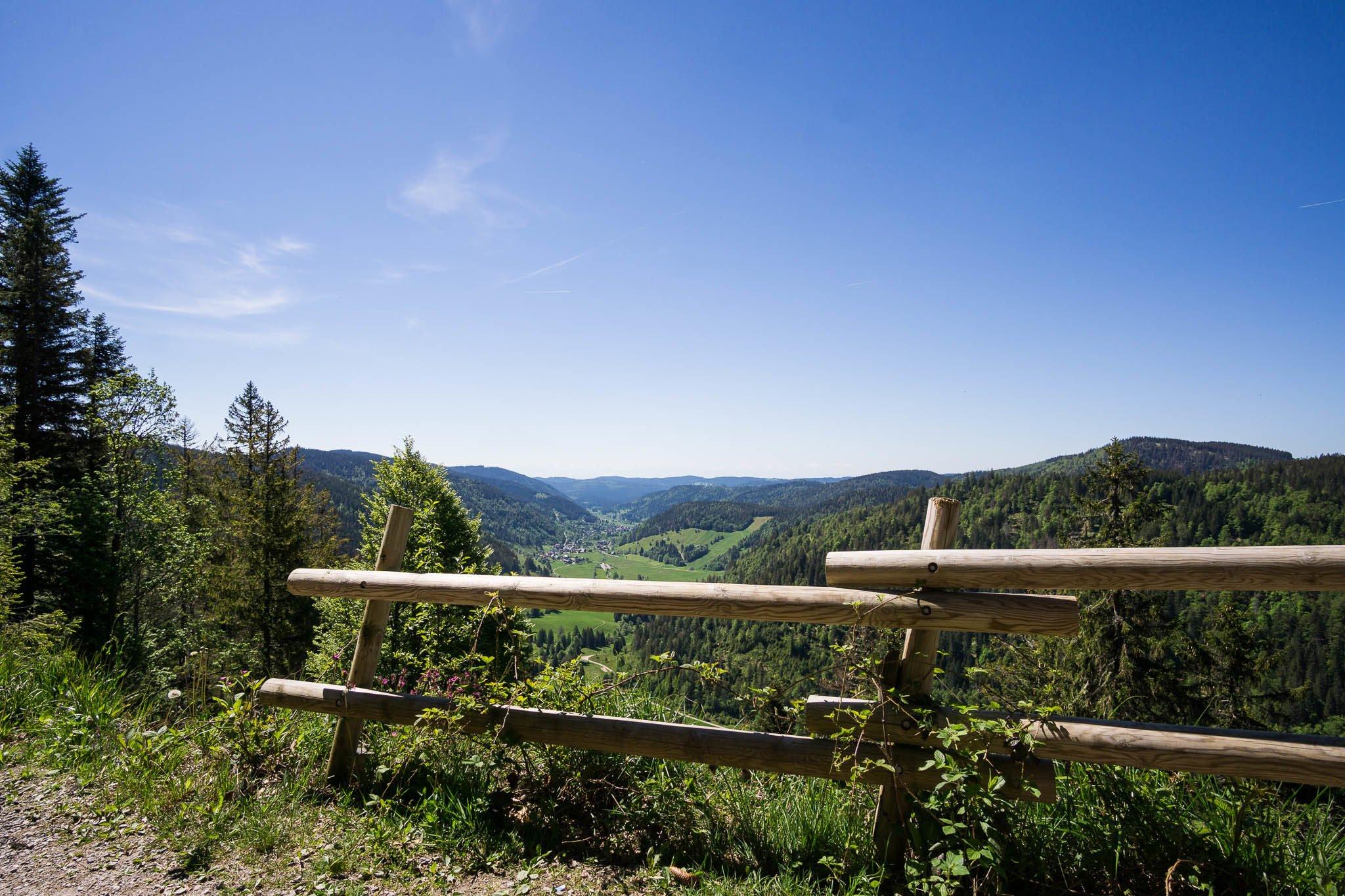 Westweg Ostvariante - beim Feldberg